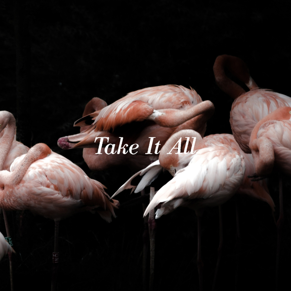 Iceage – Take It All(2018)